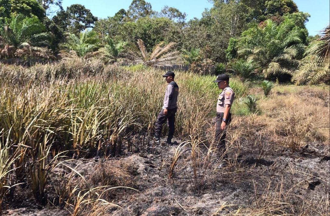 Polsek Muara Ancalong Tangani Karhutla, Lokasi 3km Ke Tengah Hutan