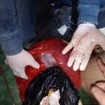 Sat Resnarkoba Polres Kutim, Berhasil Amankan Seorang Wanita Membawa Poket Sabu
