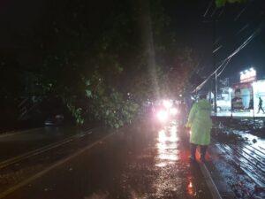 Pohon Tumbang Halangi Jalan, Sat Lantas Polres Kutim Gelar Rekayasa Lalu Lintas